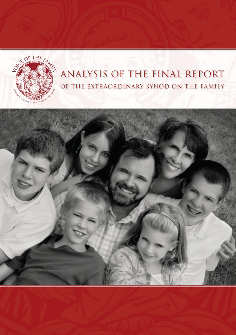 ENGLISH ANALYSIS OF THE FINAL REPORT front